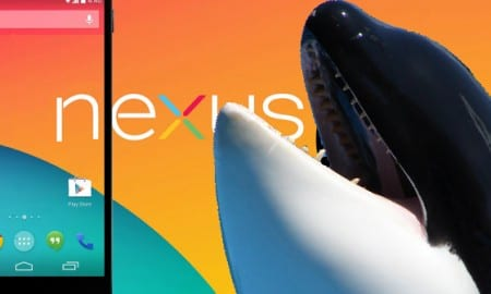 nexus shamu featured