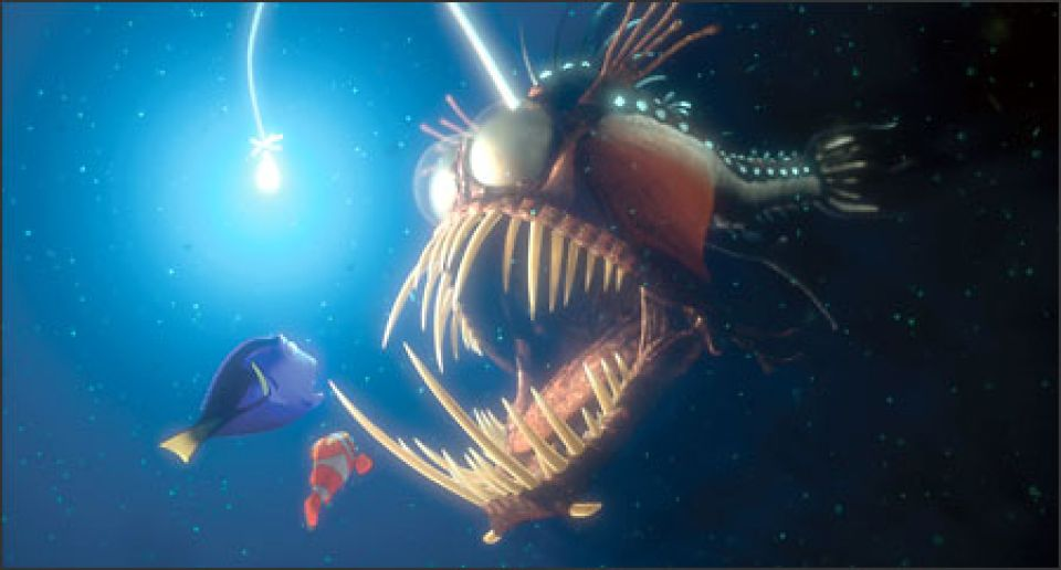 Deep dwelling anglerfish gets caught in rare video for Where do angler fish live