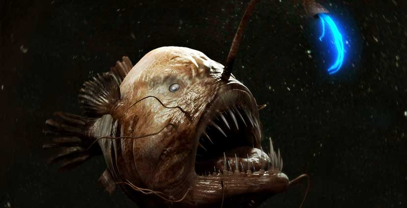 Deep-Dwelling-Anglerfish