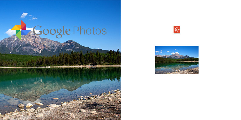 Google-Photos-Bug-Google-Plus