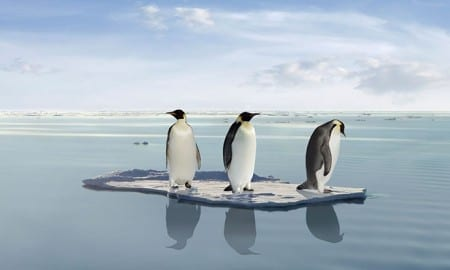 global-warming-penguins
