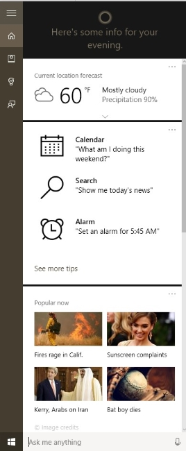 Cortana offers contextual information while offering web and local search.