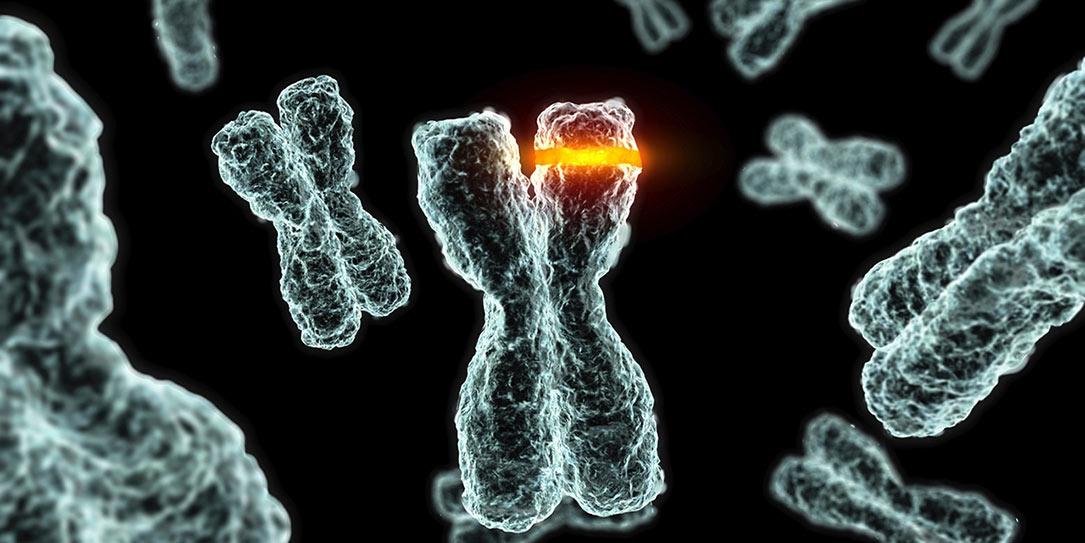 Gene-Mutation-Cancer