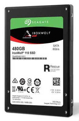 The IronWolf 110 SATA SSD.